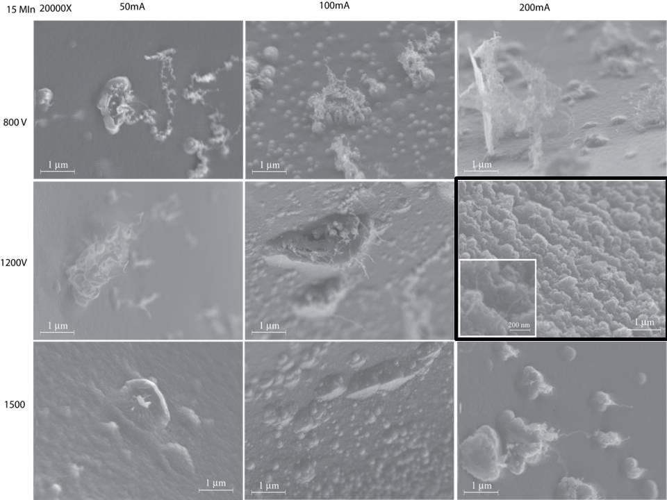 SEM Images